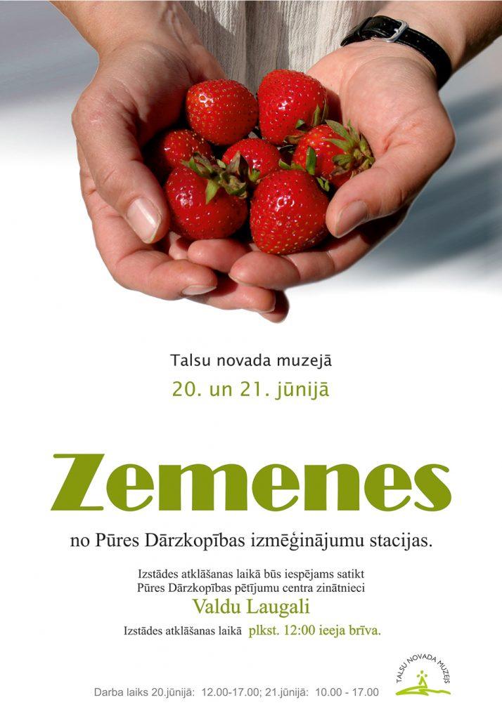 zemenes_afisa_A4