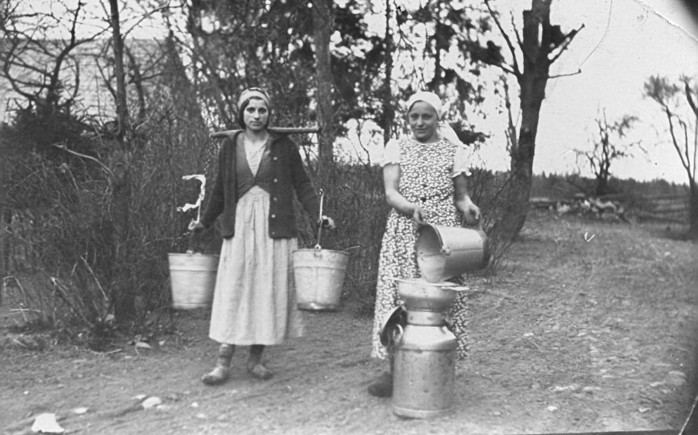 Nurmuižas pagasta Lāču māju dienestmeitas ar slaucenēm un piena kannām, ap 1935. g.