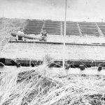 "Salmu jumta likšana Galtenes ""Ezeriņu"" vecajam stallim 1933. g."