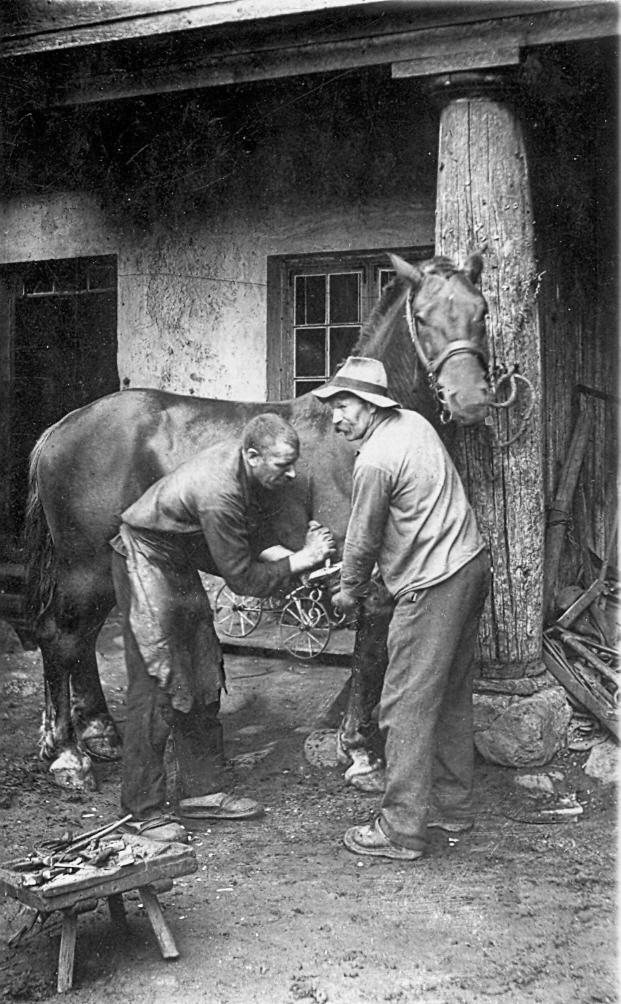 Zirga apkalšana pie kalēja Lībagos, 1920. gadi.