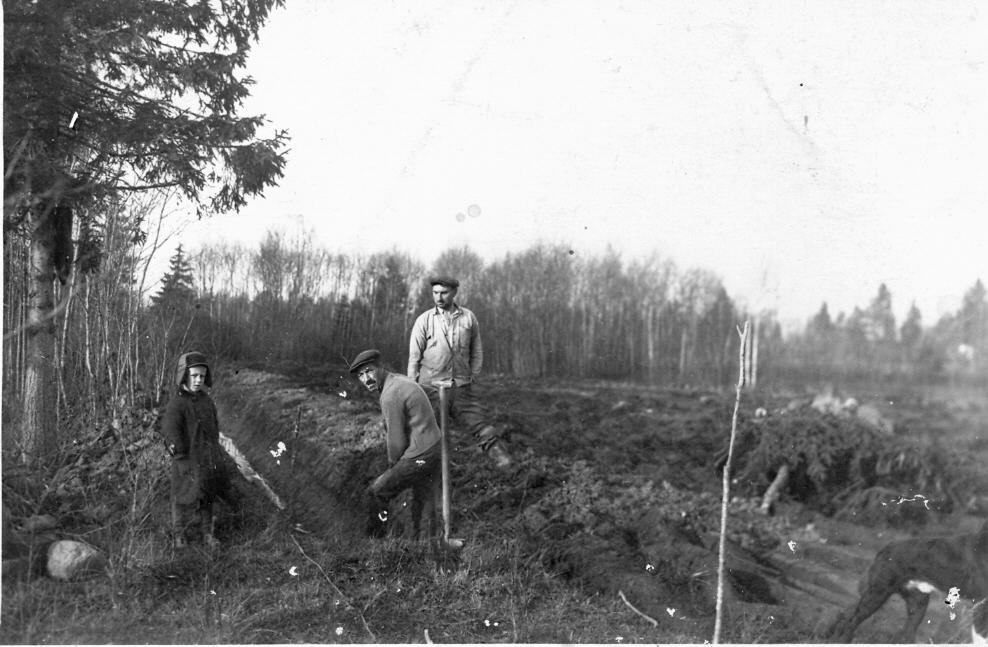 """Grāvju rakšana Ārlavas pagasta jaunsaimniecībā """"Kraujās"""", 1930. gados. 1. no labās saimnieks G. Vēbers."""