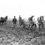 Zemnieki apar lauku ar zirgiem 1930. gados. J. Kauķa foto Rīgā.