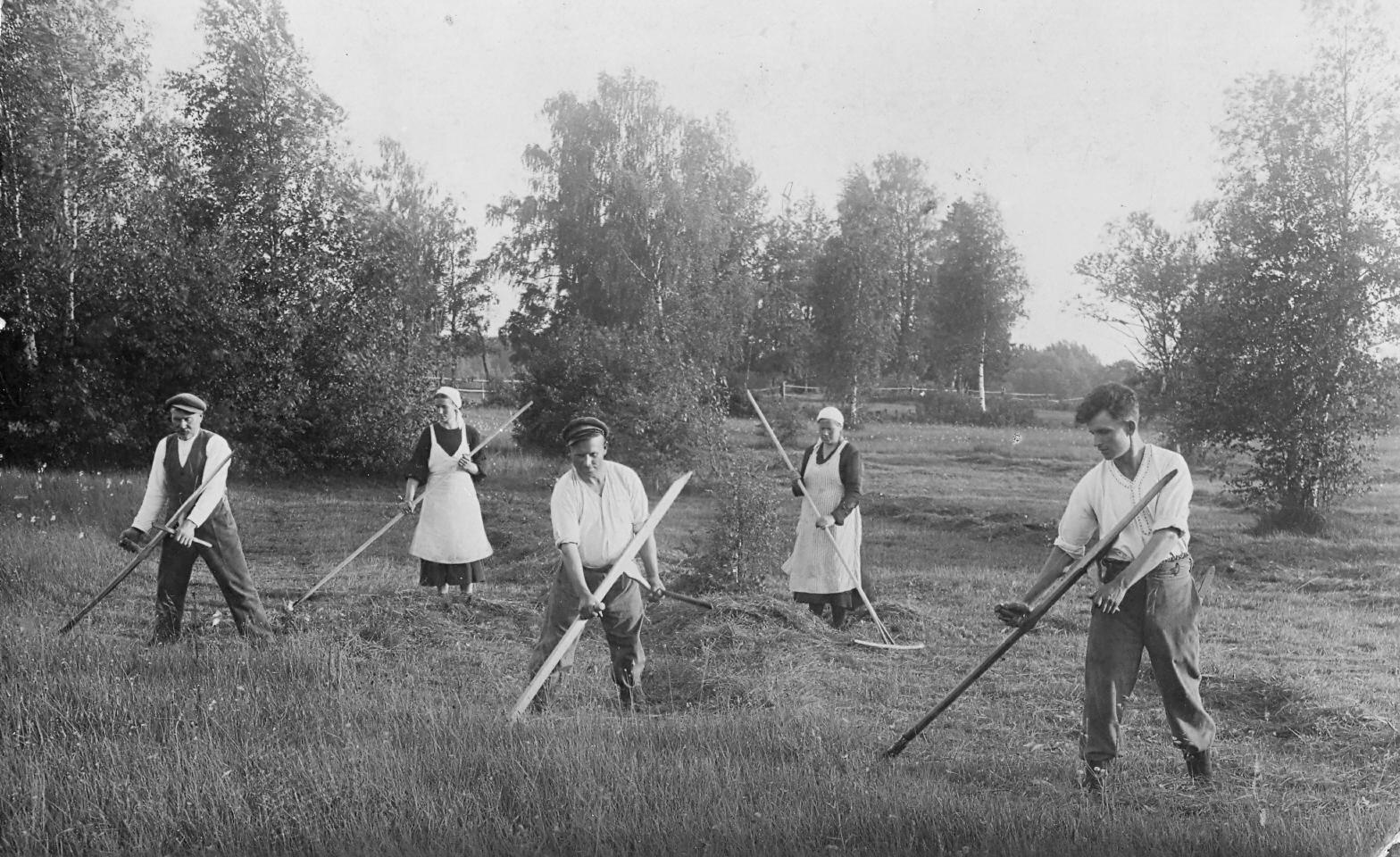 Siena pļāvēji Valgales pagastā 1930. gados.