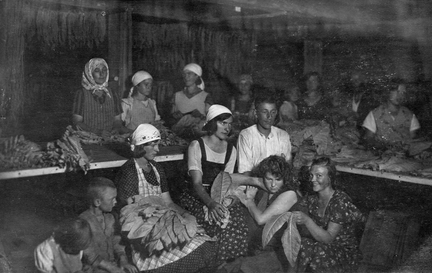 Tabakas lapu apstrādātājas Ārlavā, 1933. g.
