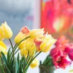 """Pavasara ziedu izstāde """"Kurzemes krāšņums"""""""