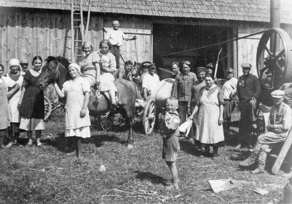 """Labības kulšanas talka Strazdes pagasta """"Skujās"""" 1930. gados"""