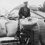 """Kolhoza """"Uzvara"""" kolhoznieki valsts labības sabērtuvē nodod atvestos graudus"""