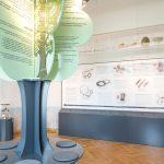 """Arheoloģijas ekspozīcija """"Ceļojums senatnē"""""""