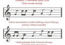 Vokālās kamermūzikas koncerts