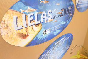 """Izstāde un izglītojoša programma """"Lielas zivis, mazas zivis"""" līdz 22. martam Talsu novada muzejā."""