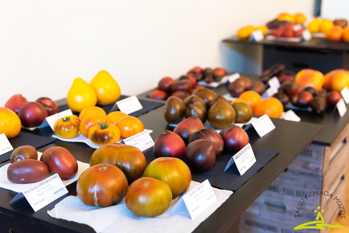 """Izstādes """"Neparastie tomāti 2020"""" atklāšana"""