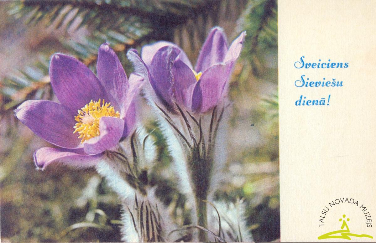 """Pastkarte. Talsu grāmatnīcai 8. Martā no Valdgales sovhoza vīriešiem, Selekcijas bērnu dārza, Ventspils grāmatu veikala """"Gaisma"""", 1964. g."""
